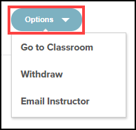 course options button highlighted and menu expanded